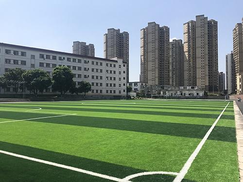 北流市初级中学-高端人造草足球场