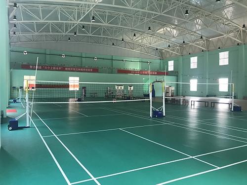 玉林市烟草局球馆-PVC塑胶地板
