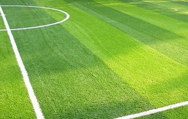 人造草坪标准